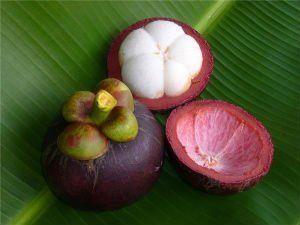 Фрукт в тайланде который воняет дуриан